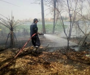 نشوب حريق في أرض زراعية بالقليوبية يكشف وجود كمية من الأسلحة بداخلها