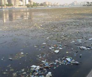 نهر النيل.. من شريان الحياة إلى مستنقع للقمامة (فيديو)