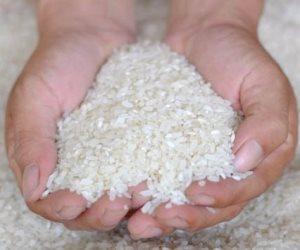 ضبط 39 طن أرز تمويني بداخله حشرات وغير صالح للاستهلاك الآدمي داخل مخزن ببني سويف