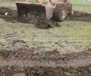 إزالة 6 مشاتل أرز بقرية مشتهر مركز طوخ بالقليوبية