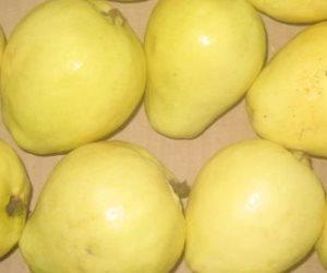 لو بتعاني من زيادة الوزن في الشتاء.. 4 أطعمة شتوية تساعدك منها الجوافة