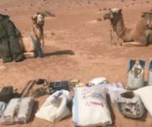 ضبط «جملين» يستخدمها العناصر الإرهابية لنقل الأسلحة والمتفجرات بوسط سيناء