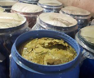ضبط مصنعي مخللات وبداخلهم 25 طن ورق عنب غير صالح في أجا