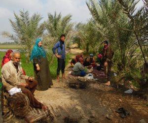بعد زيادة الانتاج وكثرة المعروض.. توقعات بهبوط 3 جنيه في سعر الأرز خلال الموسم الجديد