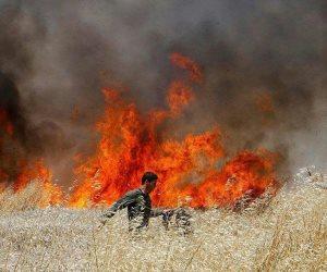 للقدس سلام.. ارتفاع عدد الشهداء الفلسطينيين إلى 55 بينهم 7 أطفال