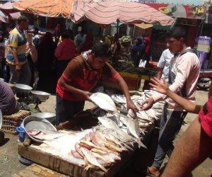 أسواق الأسماك بالسويس تعود للعمل في ثالث أيام شهر رمضان