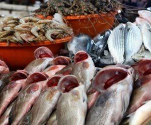 تعرف على أسعار السمك اليوم الخميس 22-8-2019 بسوق الجملة