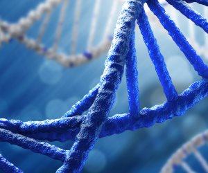 علوم مسرح الجريمة.. مصادر البصمة الوراثية الـ DNA في جسم الإنسان