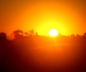 خد لك ساتر.. حالة الطقس اليوم تميل للحرارة والعظمى بالقاهرة 35 درجة