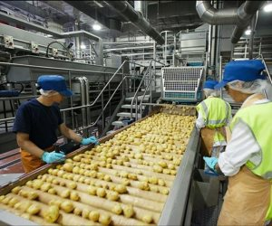أرقام الصادرات الغذائية تأتي بما لا تشتهيه الحكومة.. تراجع ملحوظ في آخر 4 شهور