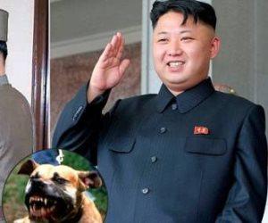 رئيس بيقتل شعبه.. متى يتوقف زعيم كوريا الشمالية عن قراراته الديكتاتورية؟