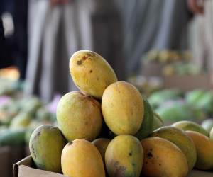 ننشر أسعار الخضروات والفاكهة اليوم الإثنين 6-7-2020.. المانجو الزبدية بـ 15 جنيها للكيلو