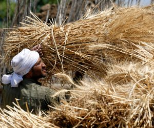 مصر خفضت الاستيراد بنسبة 16%.. كل ما تريد معرفته عن حركة تداول القمح عالميا في 2018