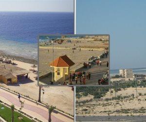 «شوشة»: 30 يونيو أنقذت مصر ومهدت الطريق لتنمية وتعمير شمال سيناء (صور)