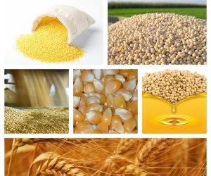 الاستقرار يسيطر على السلع الغذائية.. انخفاض أسعار الأرز