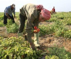 عباس شراقي يكشف نسب توزيع مياه النيل بين «الزراعة» واستخدامات المنازل (فيديو)