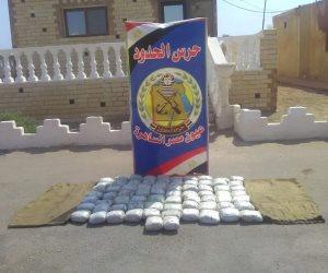 عيون مصر الساهرة| بالأرقام.. جهود قوات حرس الحدود فى 2018