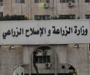 الخسائر التقديرية للهيئة الزراعية المصرية 67% من قيمة الموازنة التقديرية للعام الحالي