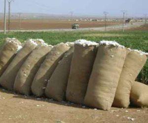 س & ج تفاصيل خطة تطوير محالج القطن للنهوض بصناعة الغزل والنسيج