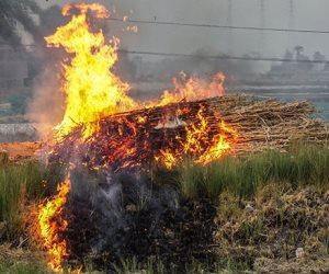 أسيوط تختنق.. من ينقذ الأهالى من دخان حرق مخلفات الذرة؟