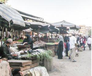 رزق يوم بيوم.. حكايات مأساوية ترويها «عاملات اليومية» الرحالة بين المحافظات (صور)