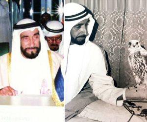 «الشيخ زايد خط أحمر».. قطر الحمدين تكشف أخلاقها والإماراتيون غاضبون