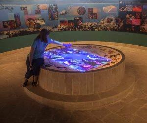 أولى خطوات الترويج للسياحة البيئية.. افتتاح المرحلة الأولى من تطوير محمية رأس محمد
