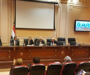 رئيس «خارجية البرلمان»: مصر لم تتاجر بقضية اللاجئين كما فعلت دول أخرى