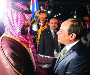 المتحدث باسم رئاسة الجمهورية ينشر فيديو لقاء السيسي ومحمد بن سلمان