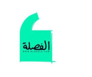 انتفاضة ضد موقع «الفصلة» المشبوه.. سمير صبرى يتقدم ببلاغ ضده لإساءته لجواز السفر المصري