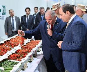 سياسيون عن «الصوب الزراعية»: مشروع قومي هدفه سد الفجوة الغذائية