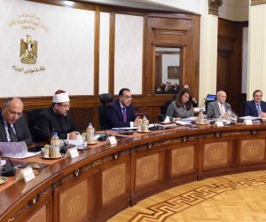 رئيس الوزراء يتابع موقف أعمال شركة تنمية الريف المصري الجديد