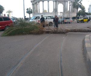 محافظات مصر مع انطلاق «طوبه».. إغلاق الموانئ وإيقاف حركة الصيد وقطع التيار الكهربائي