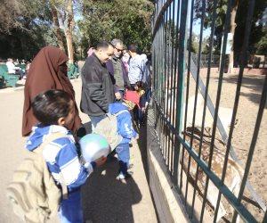 عروض جديدة للحيوانات لأول مرة.. حدائق الحيوان تتزين لاستقبال زوار أعياد الميلاد (صور)