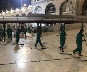 «أمانة العاصمة المقدسة».. كلمة السر وراء نجاح السعودية في السيطرة على انتشار الحشرات بالحرم