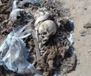علوم مسرح الجريمة.. «الاستعراف الشرعي» للأشلاء والجثث المجهولة من الإنسان لـ«الحيوان»