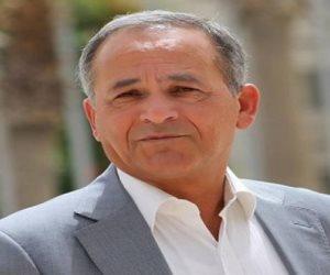 قمة الشراكة.. نائب أردني سابق: حراك مصر الدولي يُعزز الدور العربي الموحد