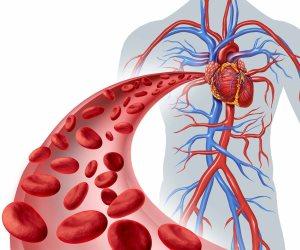 تعرف على طرق طبيعية لتنقية الشرايين في الجسم