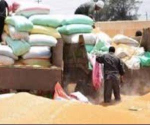 احتوت على شوائب وحبوب قديمة.. أين اختفت 1,5 مليون طن قمح بعد رفضها من وزارة التموين؟