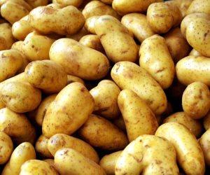 أسعار الخضروات والفاكهة اليوم السبت 21-9-2019.. البطاطس بـ 3 جنيهات للكيلو