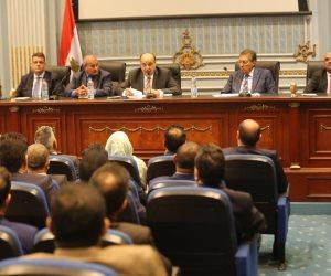 النواب المصري: مصر لن تسمح بتقسيم ليبيا من قبل أصحاب المصالح