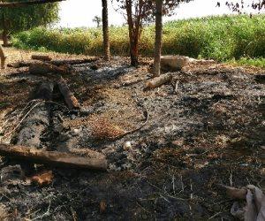 """مجهولون وراء الجريمة.. ماذا قال أهالي قرية """"طرشوب"""" عن اشتعال النيران بممتلكاتهم ليلا؟ (صور)"""