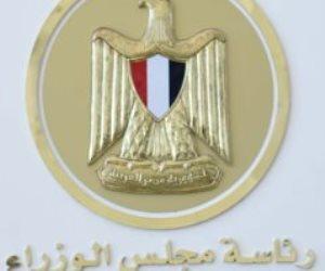 فتوى تؤكد: أرباح مساهمة الحكومة المصرية في «الجسر العربي للملاحة» تؤول للخزانة العامة للدولة