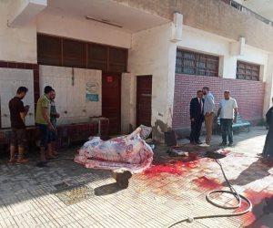 الفناء تحول إلى سلخانة.. ذبح عجل في مدرسة «ابن خلدون» أول أيام العيد (صور)
