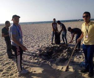 «سينا أحلى بينا».. مبادرة شبابية سيناوية للنهوض بالعريش ونظافة شواطئها (صور)