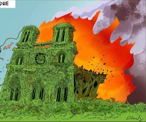 10 رسومات كاريكاتيرية تسلط الضوء على حرائق الأمازون
