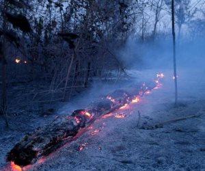 كيف فضحت حرائق الأمازون الدبلوماسية الفاشلة؟