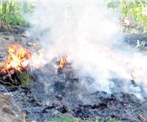 ضربة قوية لمافيا عزت حنفي.. إحراق «حدائق الشيطان»