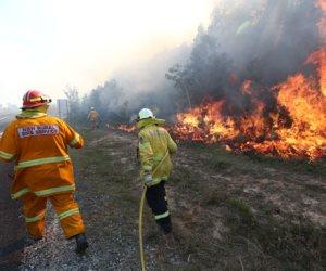 العالم في 24 ساعة.. غابات أستراليا تحترق.. وأزمة وقود فى هايتى وترامب يطمح في ولاية ثانية