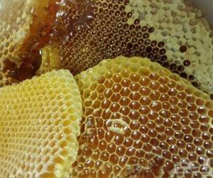 6 فؤائد للعسل الأبيض.. يقلل الكوليسترول أبرزها